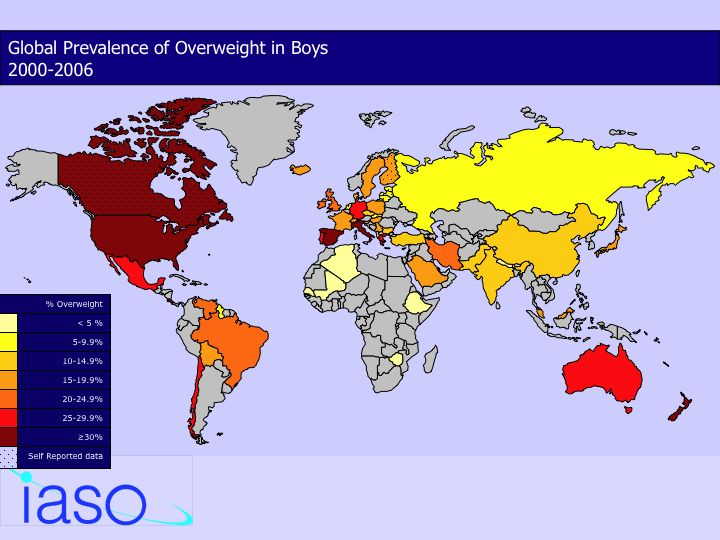 obesity around the world article